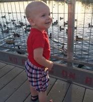 he loved the ducks